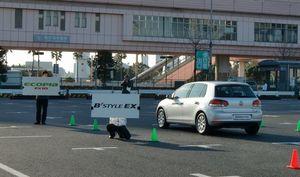 EX10golf2.jpg